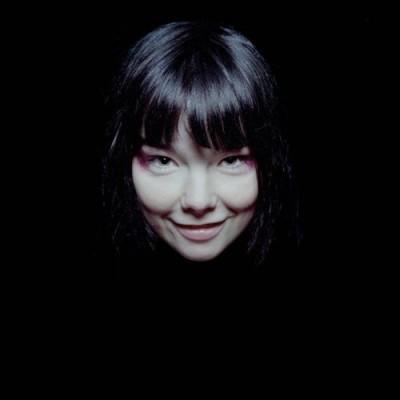 Música da cantora islandesa, Björk, integra aplicativo do IPAD.
